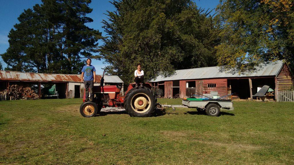Woofing in Nueva Zelanda - granja y tractor