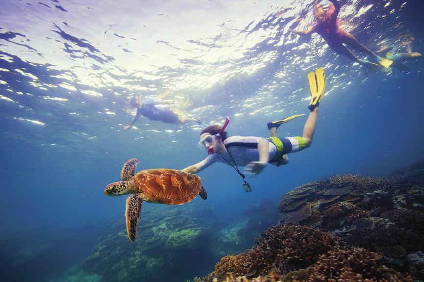 Buceando con tortugas en Australia