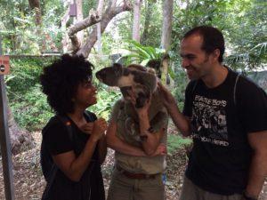 Pedro y Rocio_Lone Pine Koala Sanctuary